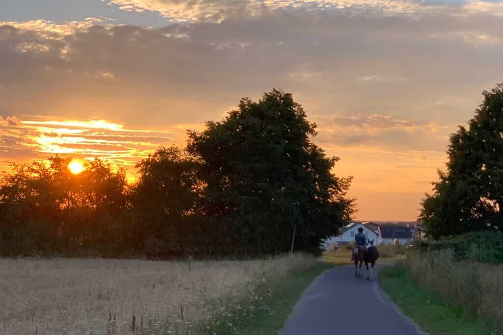 Sonnenuntergang bei uns zu Hause