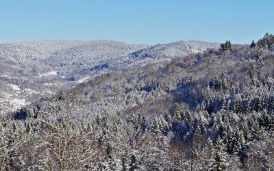 Winterzauber und Wellness im Ferienhaus in den Vogesen