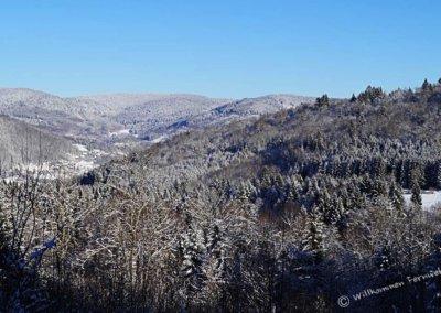 Ausblick Vogesen im Winter