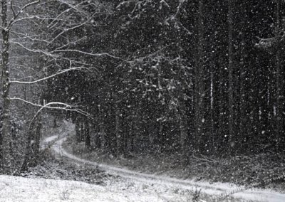 Der am Chalet vorbeiführende Weg im dichten Schneefall