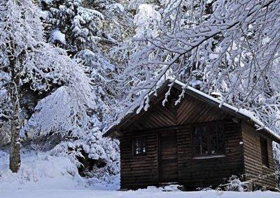 Schutzhütte im Winterwald