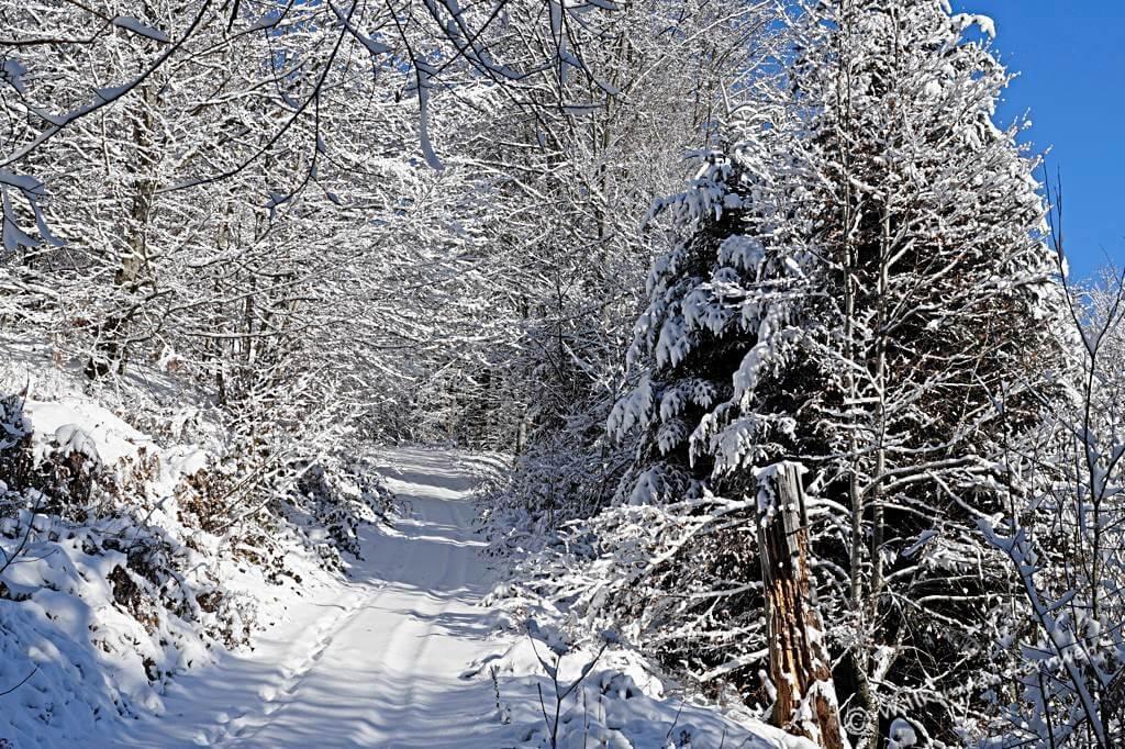 Der Winterzauber lässt den stetigen Anstieg vergessen