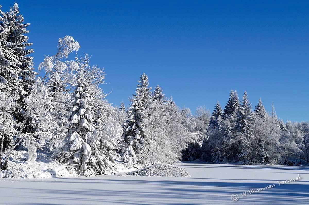 Ein Wintertraum an einem zugefrorenen und verschneiten See, Vogesen