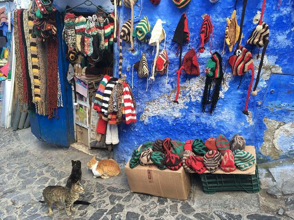 Blaue Häuser in Chefchaouen, Marokko (felibrina.de)
