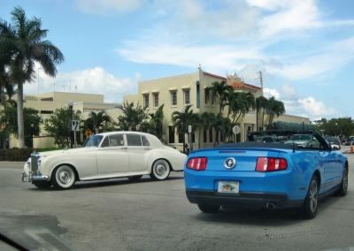 Florida Ford Mustang