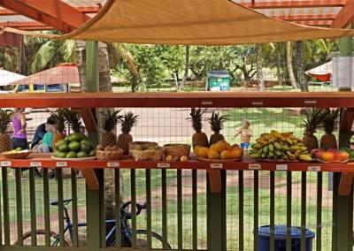Leckeres Hawai'i Obst bei Moloa'a Sunrise