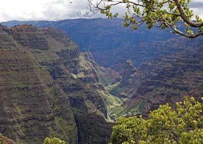 Poomau Canyon Vista, Kauai