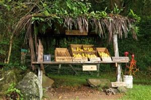 Einfacher Fruit Stand auf Maui