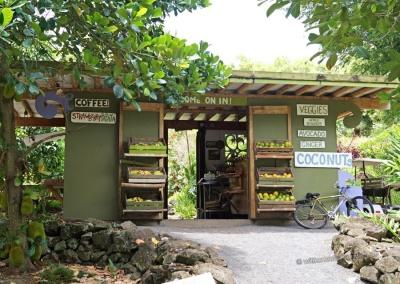 Laulima Fruit Stand