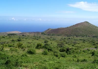 Blick vom Piilani Highway