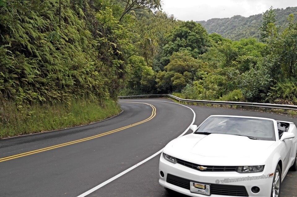 Offene Dusche Nachteile : Die Road to Hana, der vielleicht sch?nste Roadtrip Hawaiis