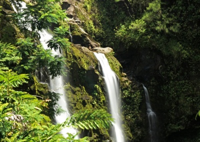 Upper Waikani Falls, Maui