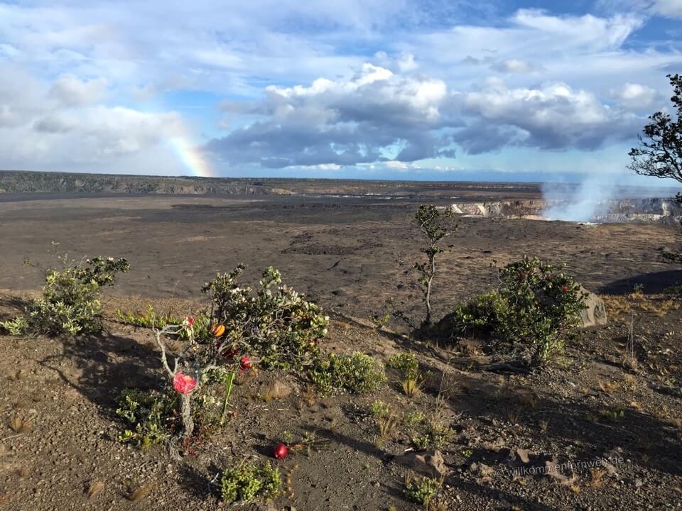 Halemaumau Krater mit Regenbogen, Hawaii