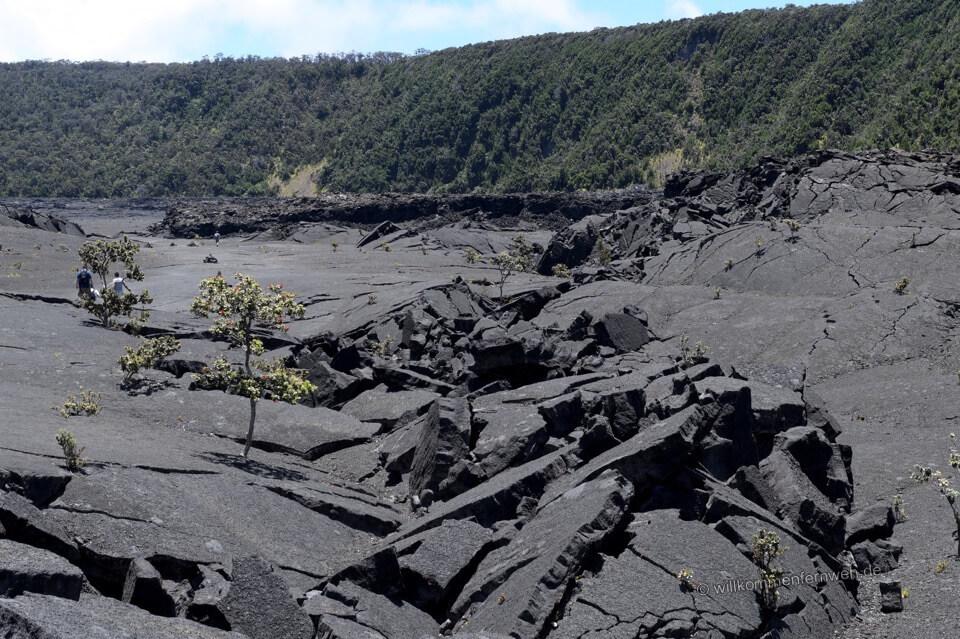 Der Kilauea Iki Trail