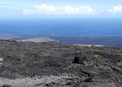 Lava bis zur Küste