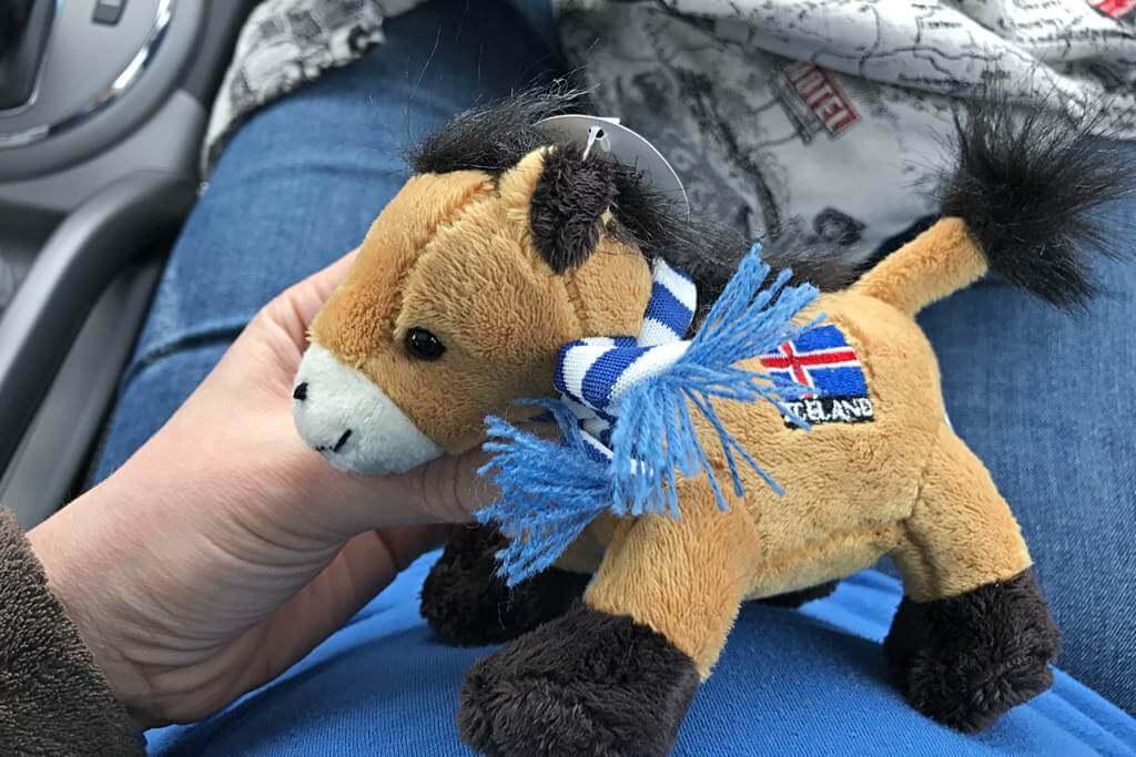 Islandpferde haben wir reichlich gesehen – daher unser Mitbringsel