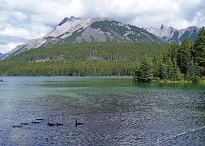 Der Two Jack Lake von unserer Campsite aus
