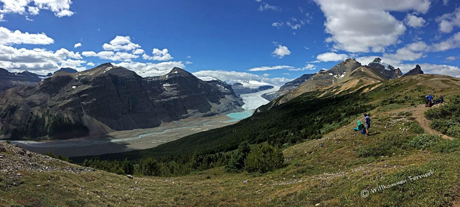 Panorama vom Parker Ridge zum Saskatchewan Gletscher