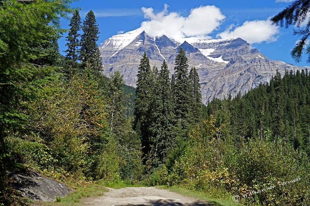 Kinney Lake Trail mit Blick auf den Mount Robson