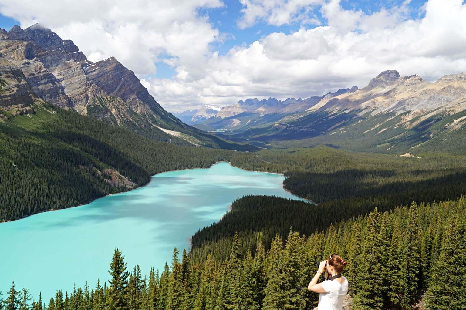 Blick in die Ferne am Peyto Lake, Banff National Park, Kanada