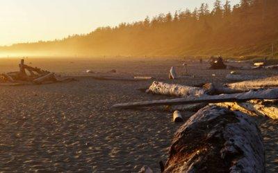 Regenwald, Strand und Meeresrauschen im Pacific Rim National Park