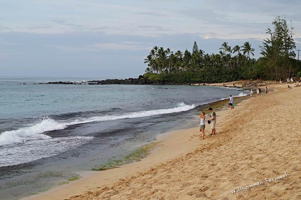 Schöne Strände im Norden von Oahu