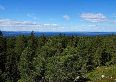 Der Siljansee vom Naturum Dalarna aus