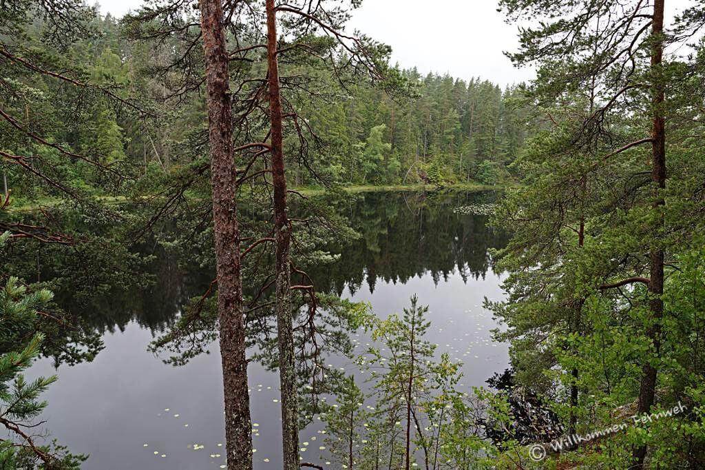 See im Tiveden Nationalpark, Schweden