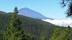 Lieblingsberge, Teide