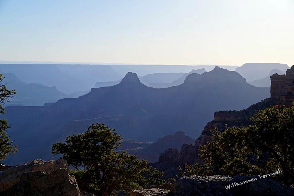 Blick vom Cape Royal im Gegenlicht, Grand Canyon North Rim