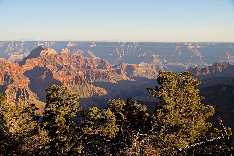 Aussicht nahe Grand Canyon Lodge und Brightangel Point, Grand Canyon North Rim