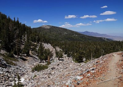 Aussicht vom Bristlecone Trail