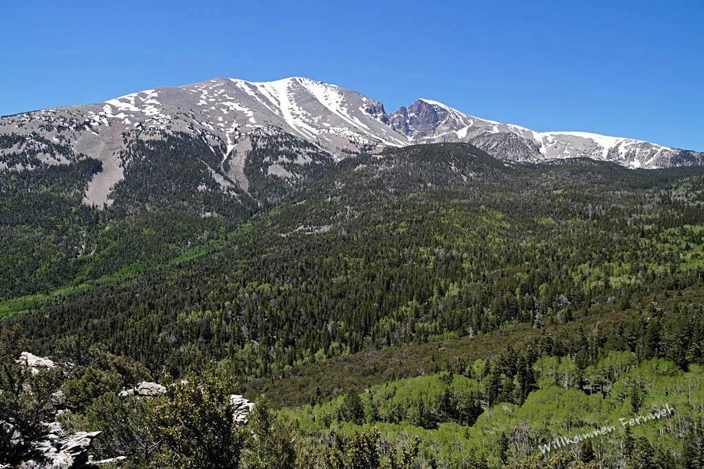 Blick zum fast 4000 m hohen Wheeler Peak vom Mather Overlook aus, Great Basin Nationalpark