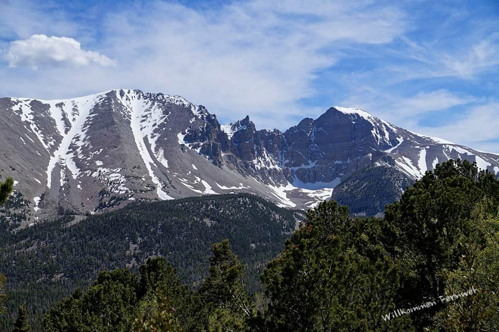 Blick zum Wheeler Peak vom Scenic Drive aus, Great Basin National Park
