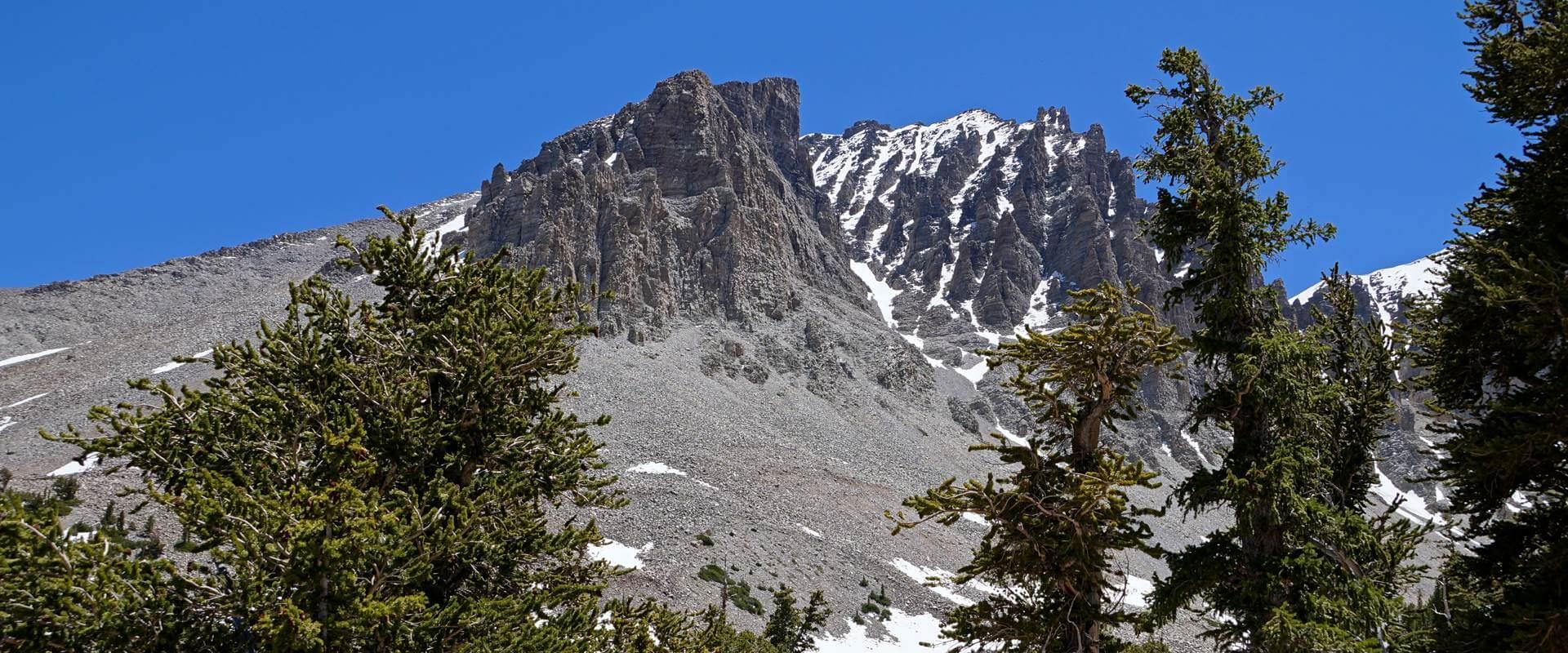 Great Basin National Park – zu Besuch bei den ältesten Bäumen der Welt