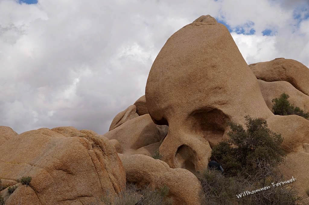 Skull Rock im Joshua Tree National Park