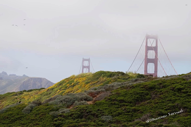 Nebel, ein paar Sonnenstrahlen und eine der bekanntesten Brücken der Welt ...