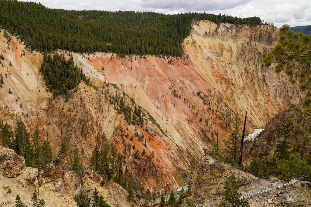 Wieder schöne Farben im Grand Canyon of the Yellowstone