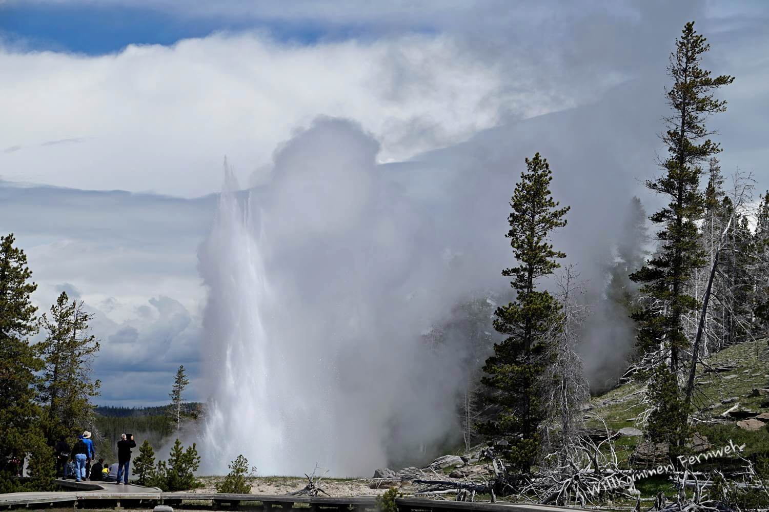 Ausbruch des Grand Geyser im Yellowstone National Park
