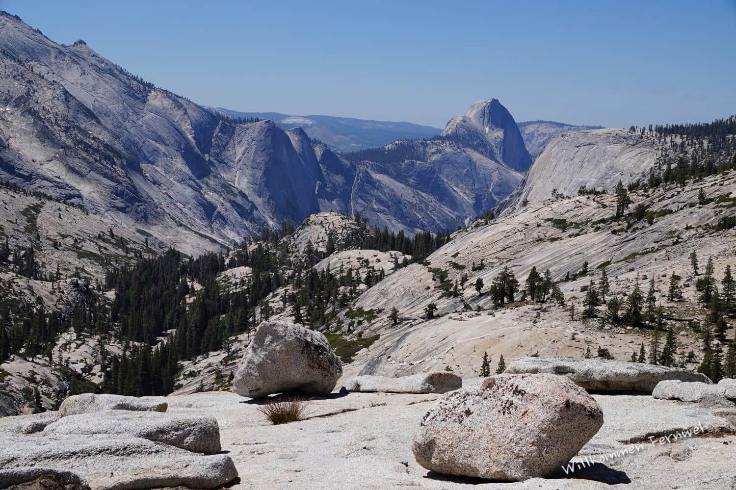 Yosemite High Country: Am Olmsted Point mit Blick auf den Half Dome, Yosemite National Park