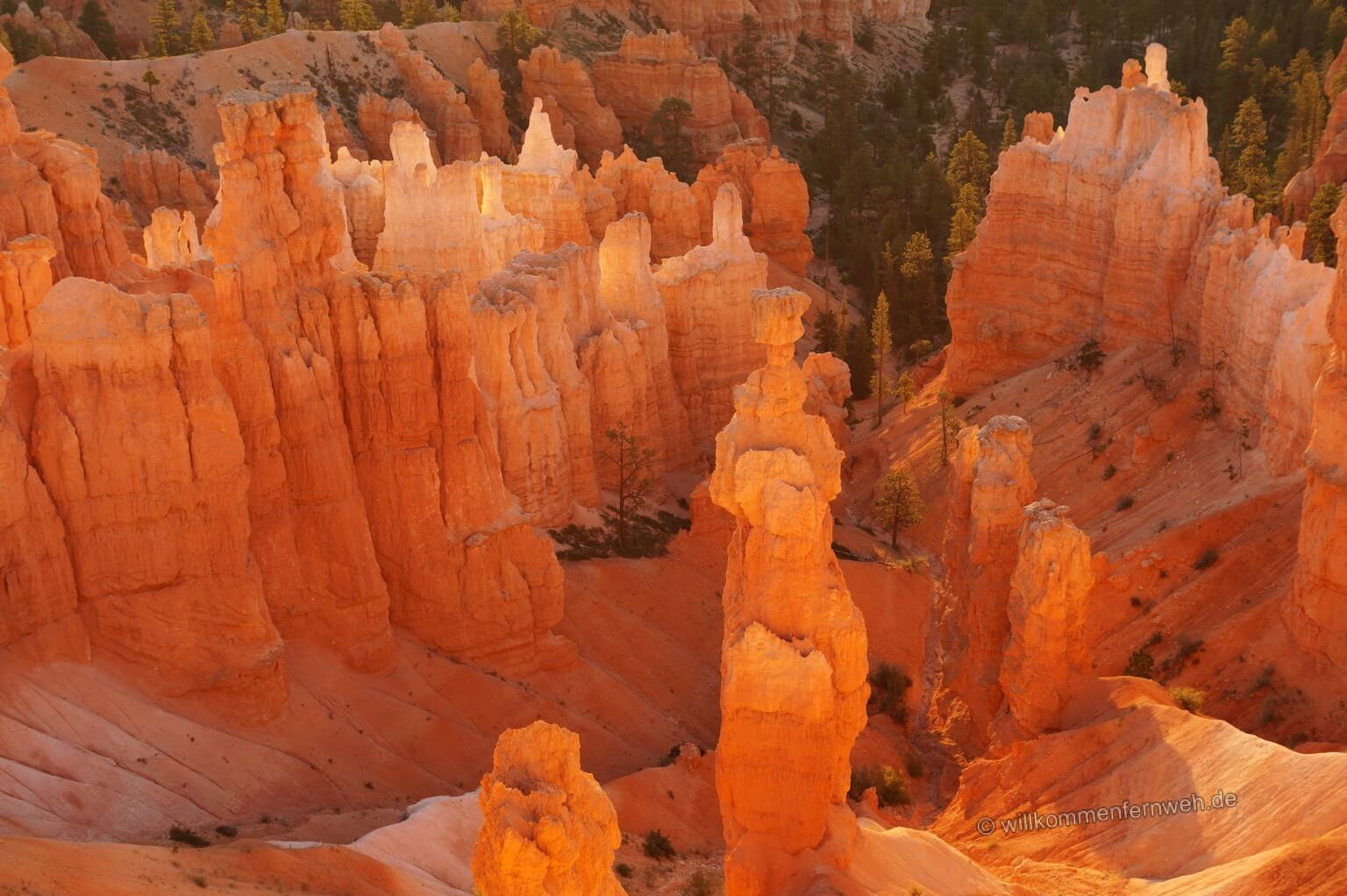 Thors Hammer, Bryce Canyon National Park