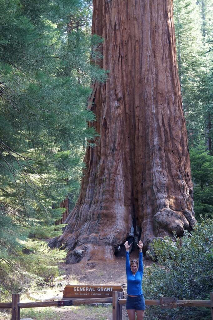 General Grant Tree, Kings Canyon National Park