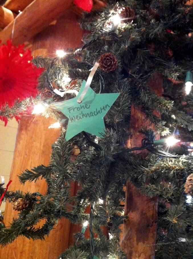 Unser Weihnachtsstern
