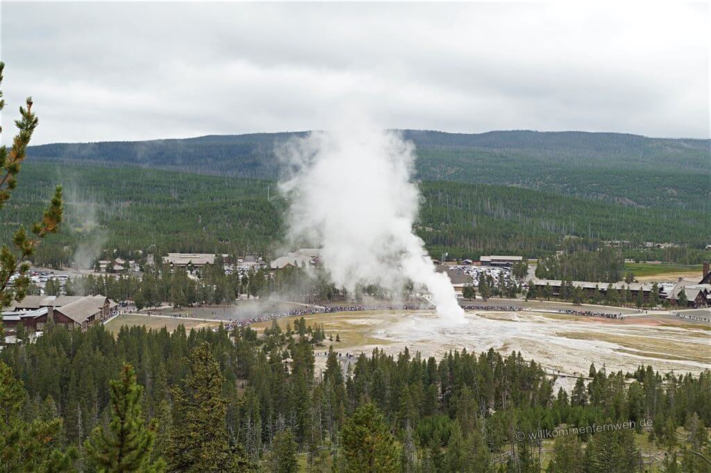 Old Faithful vom Observation Point