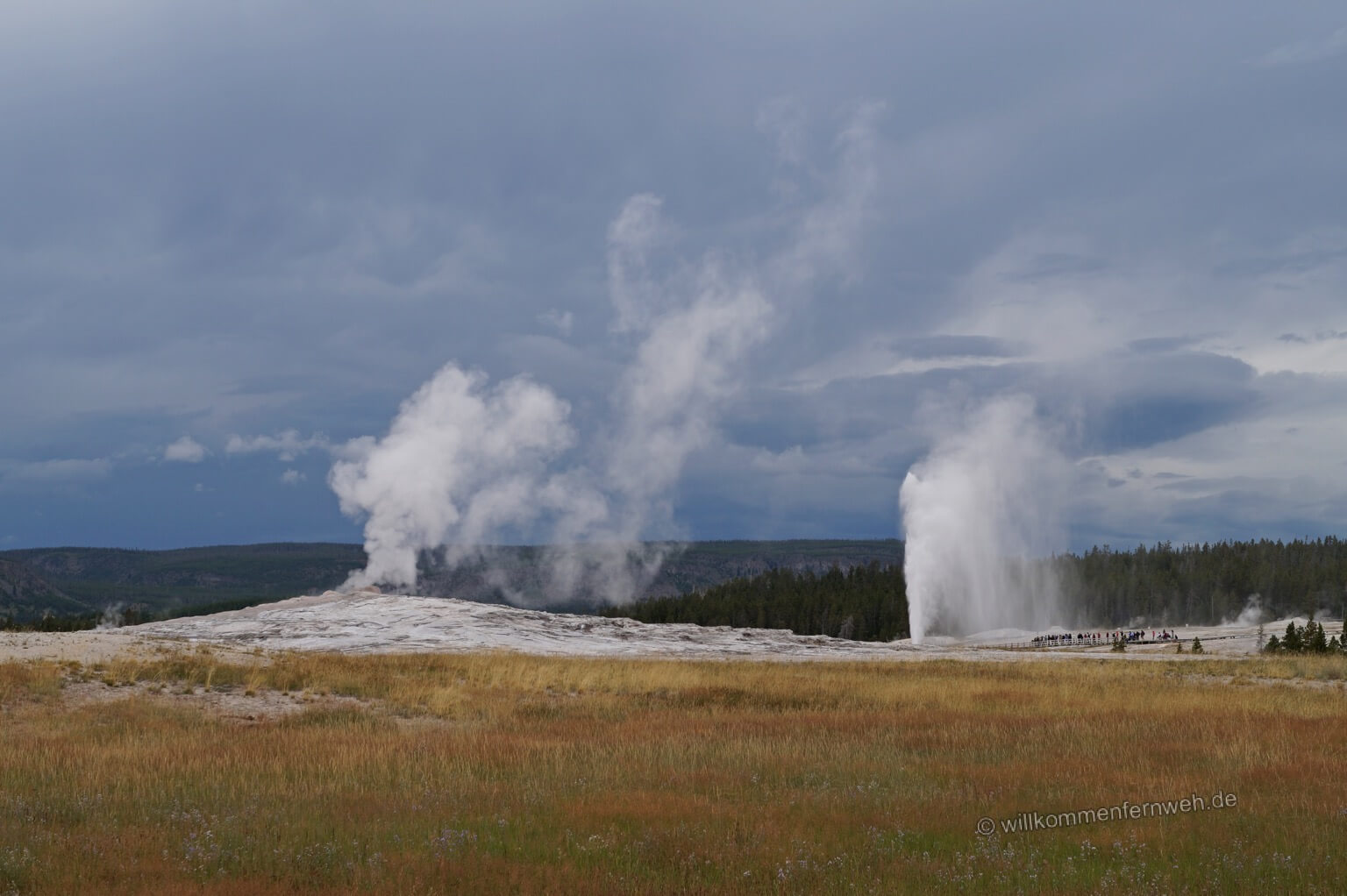 Old Faithful und Beehive Geysire, Yellowstone National Park, USA