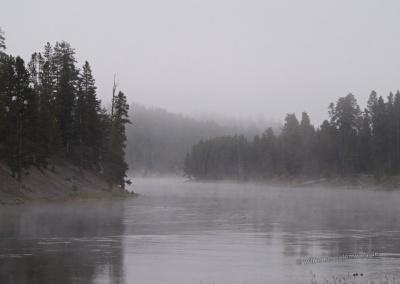 Der Yellowstone River im Nebel