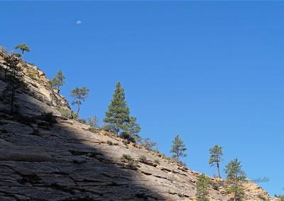 Felsen und Mond